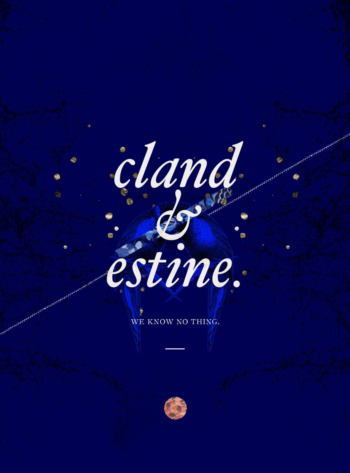 cland&estine_type_nita