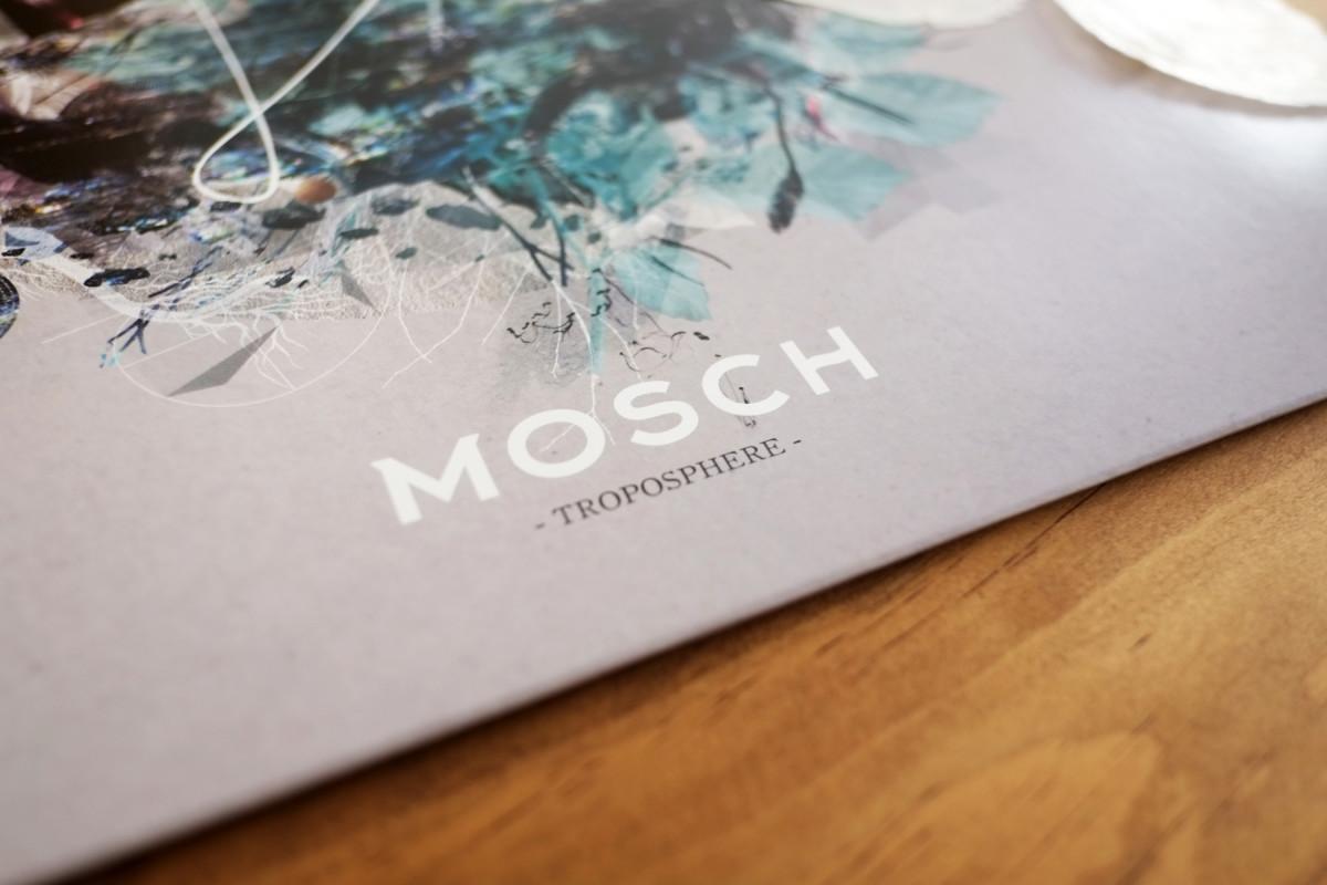 mosch_troposphere_16