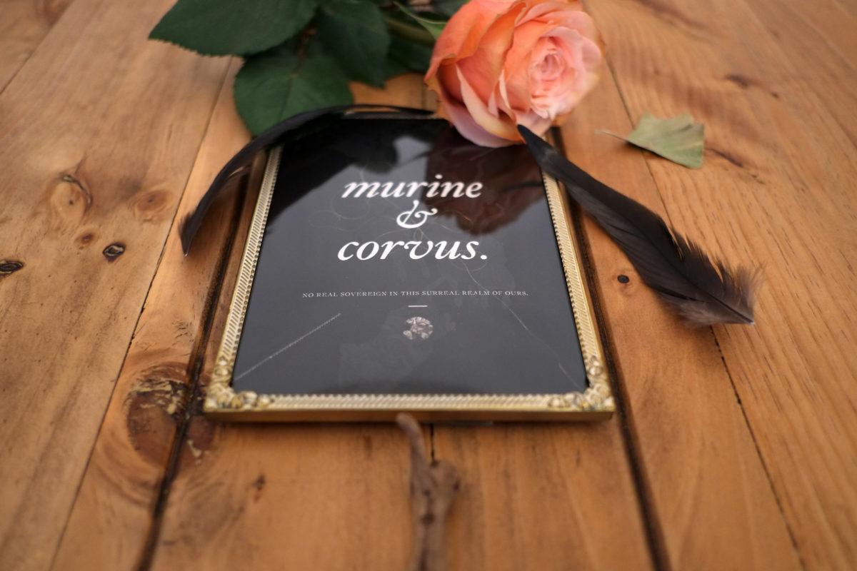 murine_corvus_nita_type_02