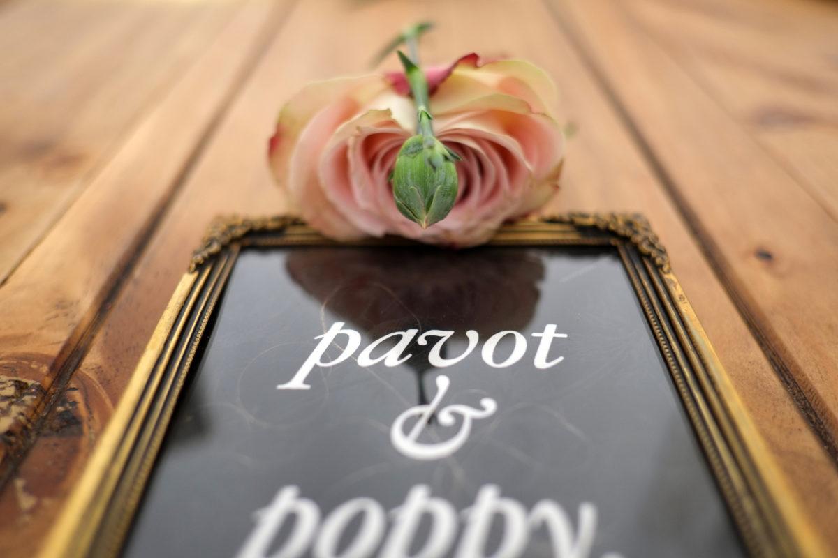 pavot_poppy_nita_fig_00_type_03