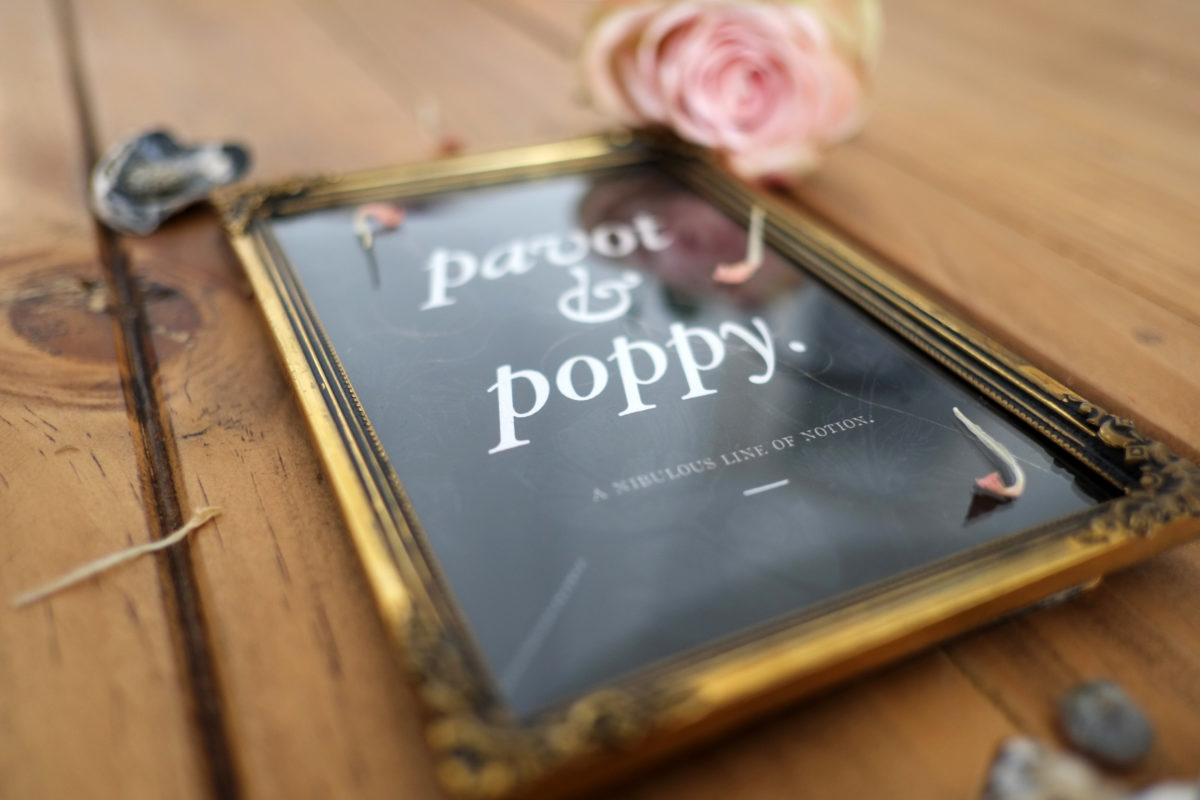 pavot_poppy_nita_fig_00_type_16