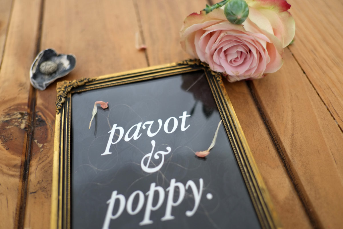 pavot_poppy_nita_fig_00_type_20